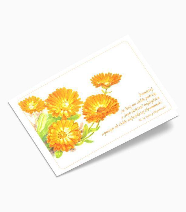 Karnet Kwiaty (0520)_001