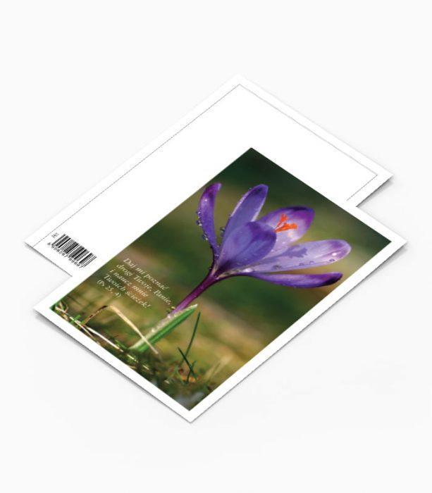Kartka Pocztowa Kwiaty (PK1)
