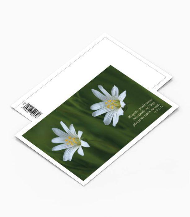 Kartka Pocztowa Kwiaty (PK2)