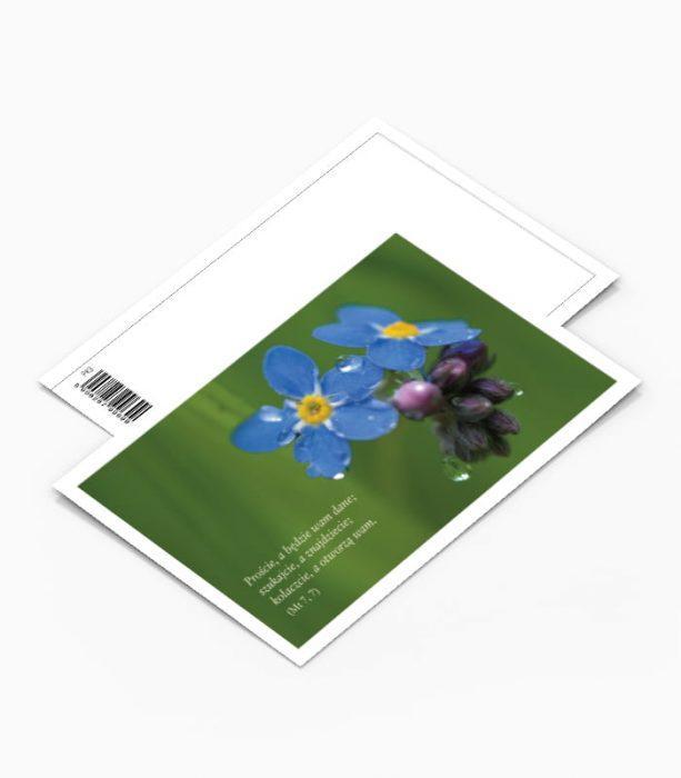 Kartka Pocztowa Kwiaty (PK3)